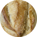 italian-bread-panini